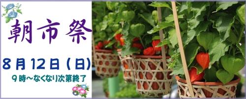 Gourmet summer festival in central part Park
